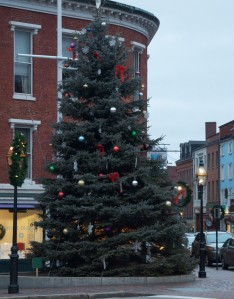 Portsmouth Xmas Tree